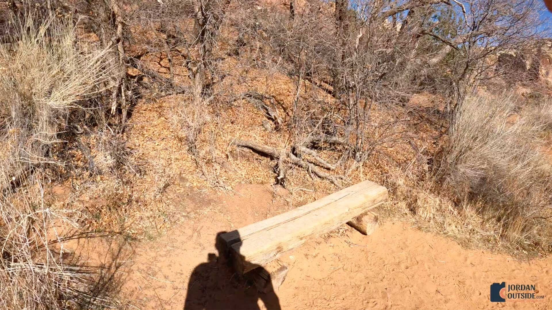 A bench on the Lower Calf Creek Falls Trail