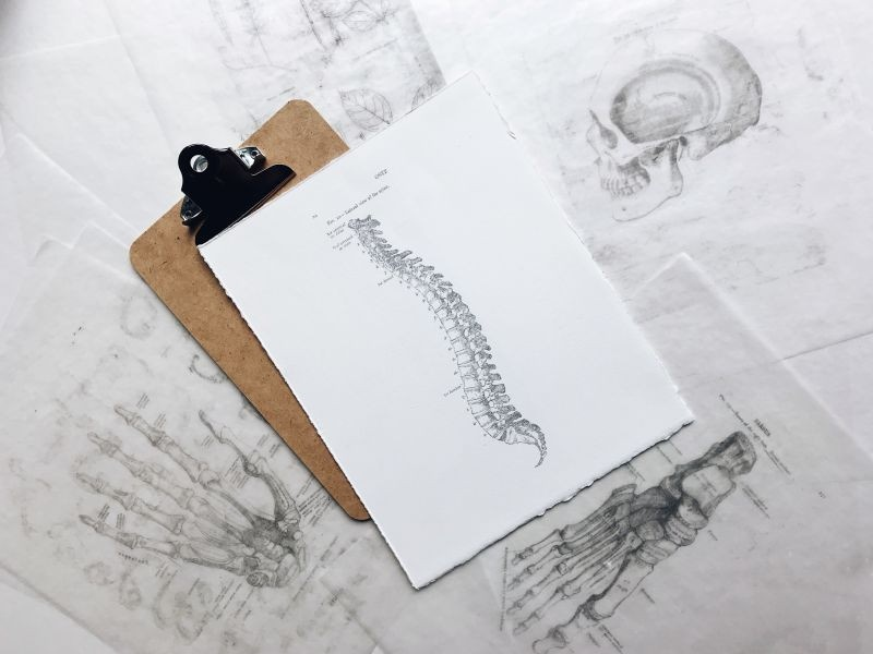 clipboard with drawing of curved spine