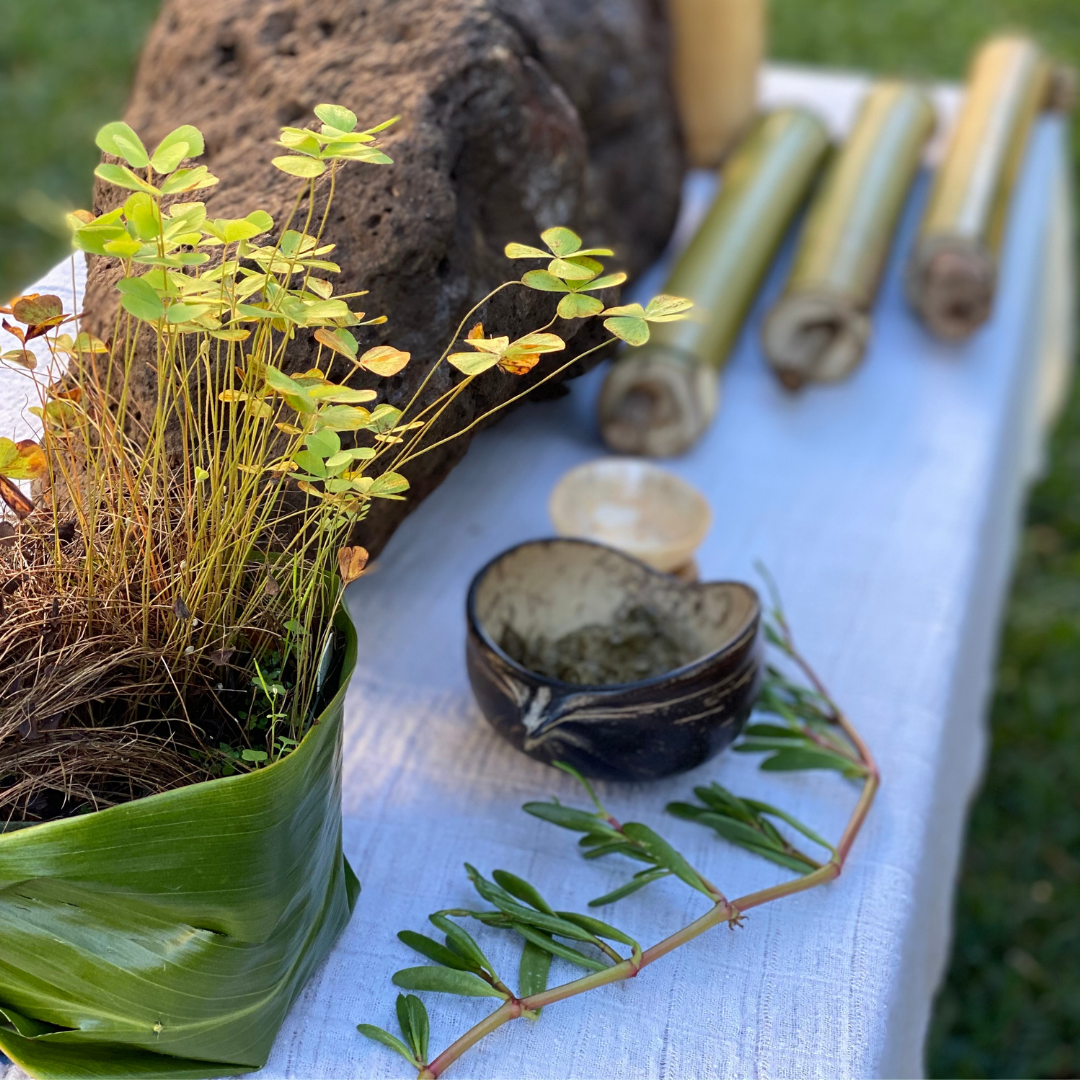 A low table covered in a white cloth. On the table is a large rock, bamboo (ohe), a piece of a coastal succulent plant (ʻakiʻaki), a coconut bowl (apu), and a delicate native fern (ihiihi).