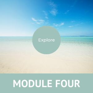 Midlife Quest Module 4