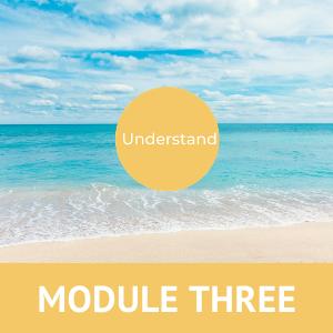 Midlife Quest Module 3