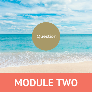 Midlife Quest Module 2