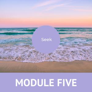 Midlife Quest Module 5