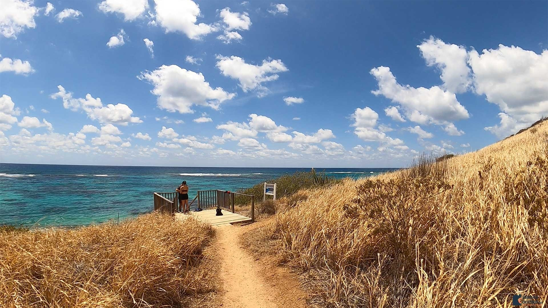 End of trail to Isaac's Bay Beach, St. Croix