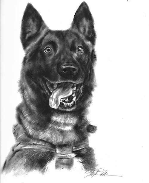 dry brush oil painting of military working dogs