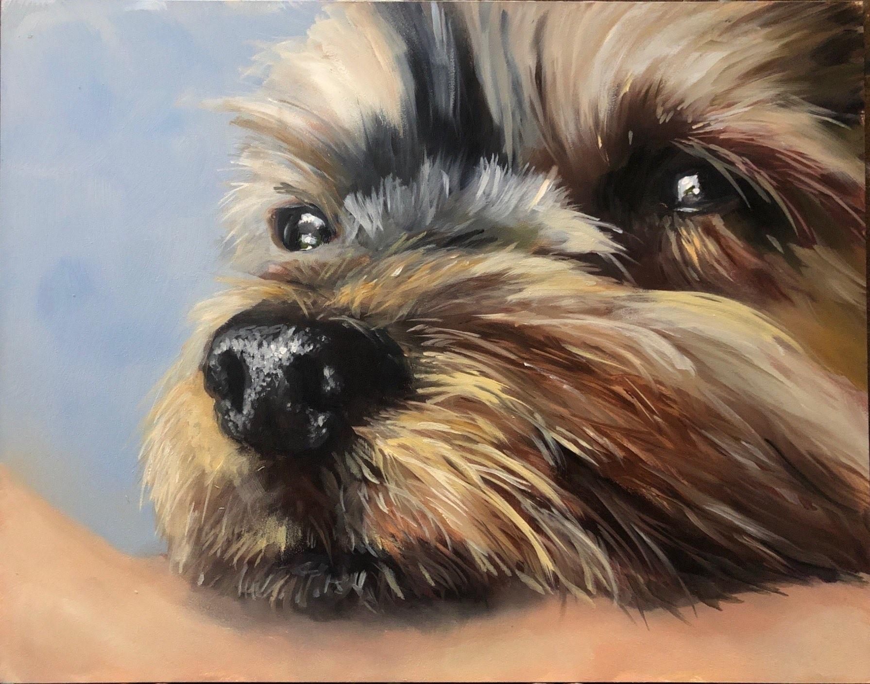 Original custom oil pet portrait