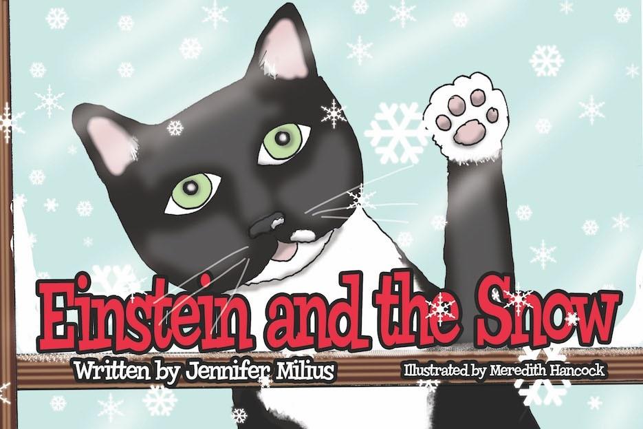 Einstein and the Snow by Jennifer Milius