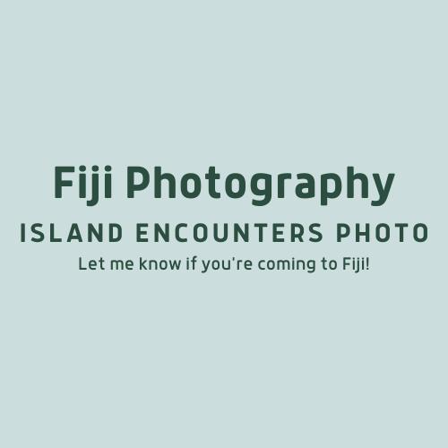 Island Encounters Photography
