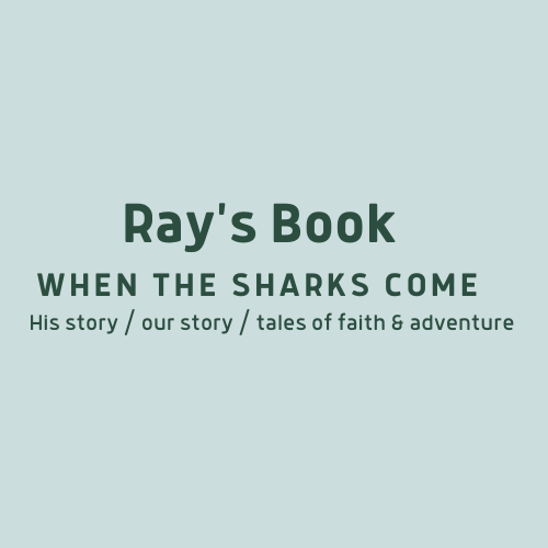 Ray's Book