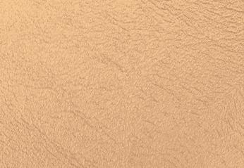 NATALIE PUGLISI