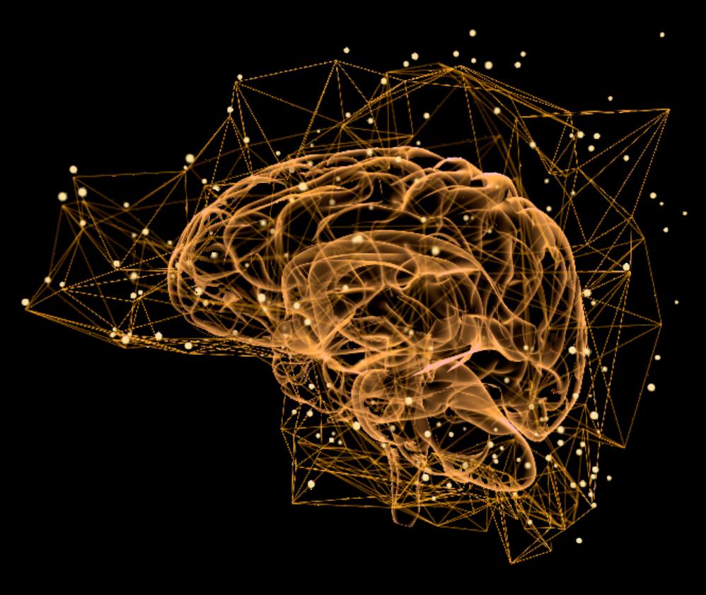 Gold Brain Map