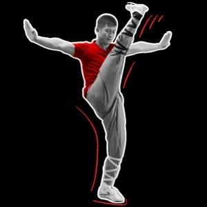 Shaolin Kung Fu Kicks