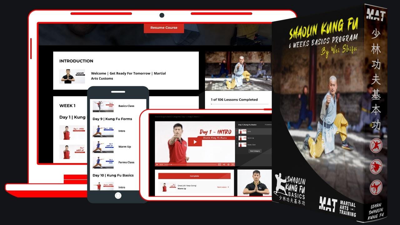 MAT Shaolin Kung Fu Basics Online Program