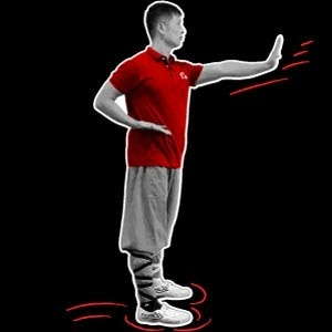 Shaolin Kung Fu Hand Forms