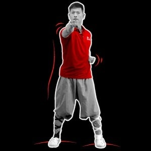 Shaolin Kung Fu Punches