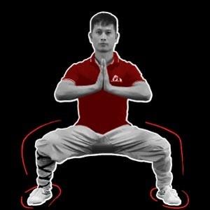Shaolin Kung Fu Stances