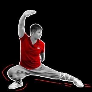 Shaolin Kung Fu Sweeps