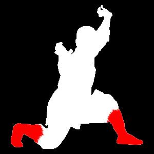 Shaolin Warrior Monk Wei Shifu Pose