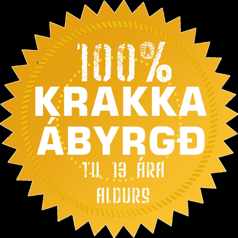 Krakkaábyrgð Hraðlestrarskólans