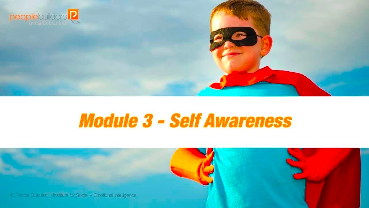 Module 3 Social and Emotional Intelligence Certification