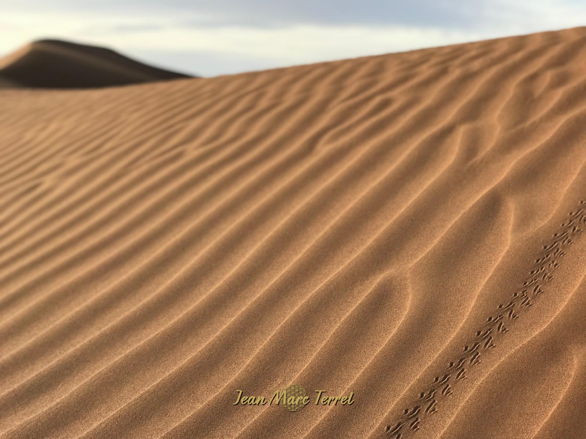 Trek marche et méditation désert