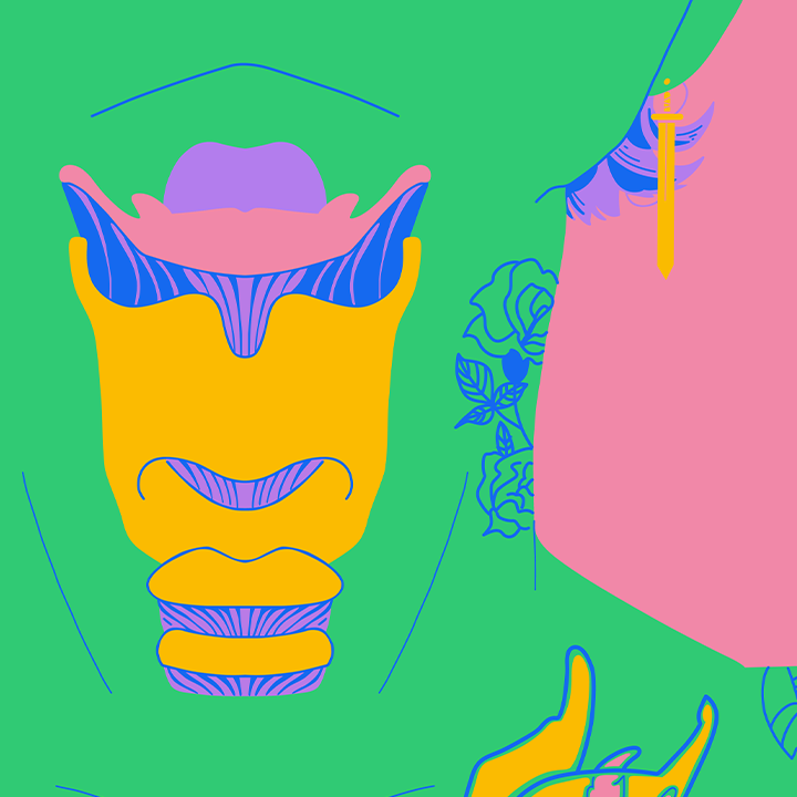 colourful illustration of a larynx against a neck