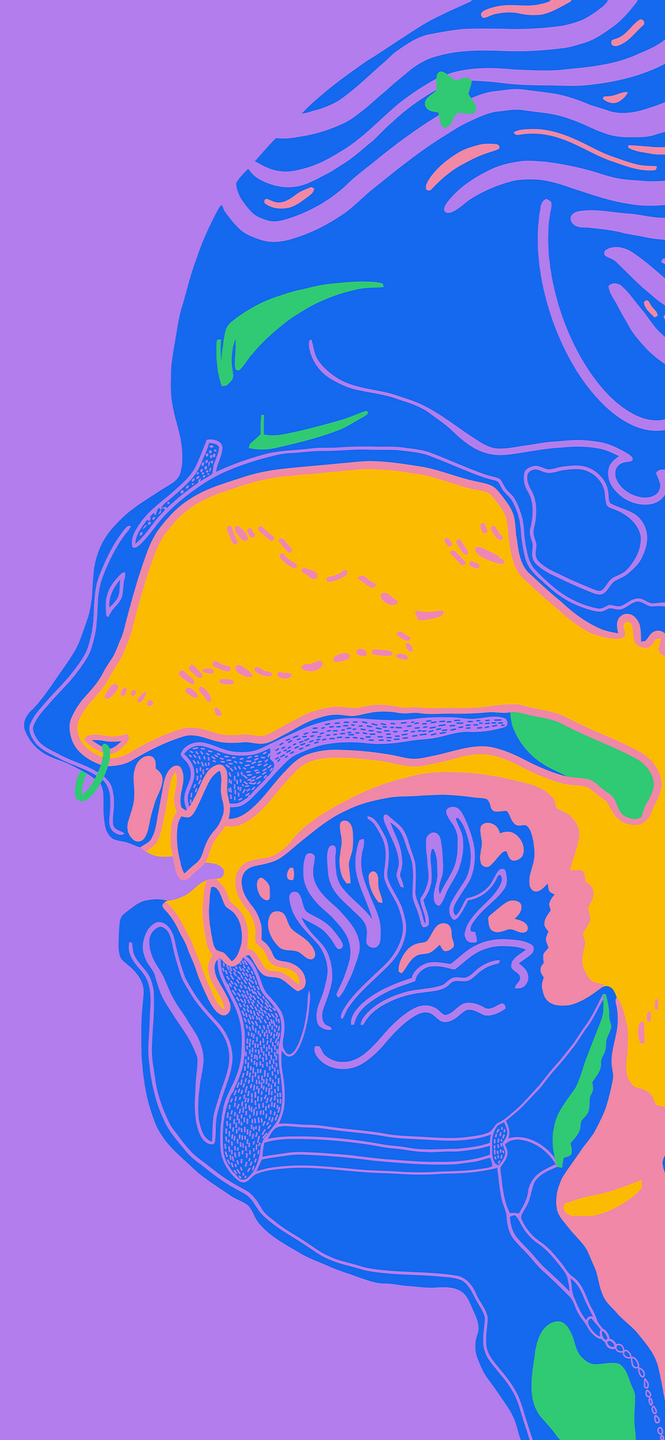 phone wallpaper of an illustration of the vocal tract