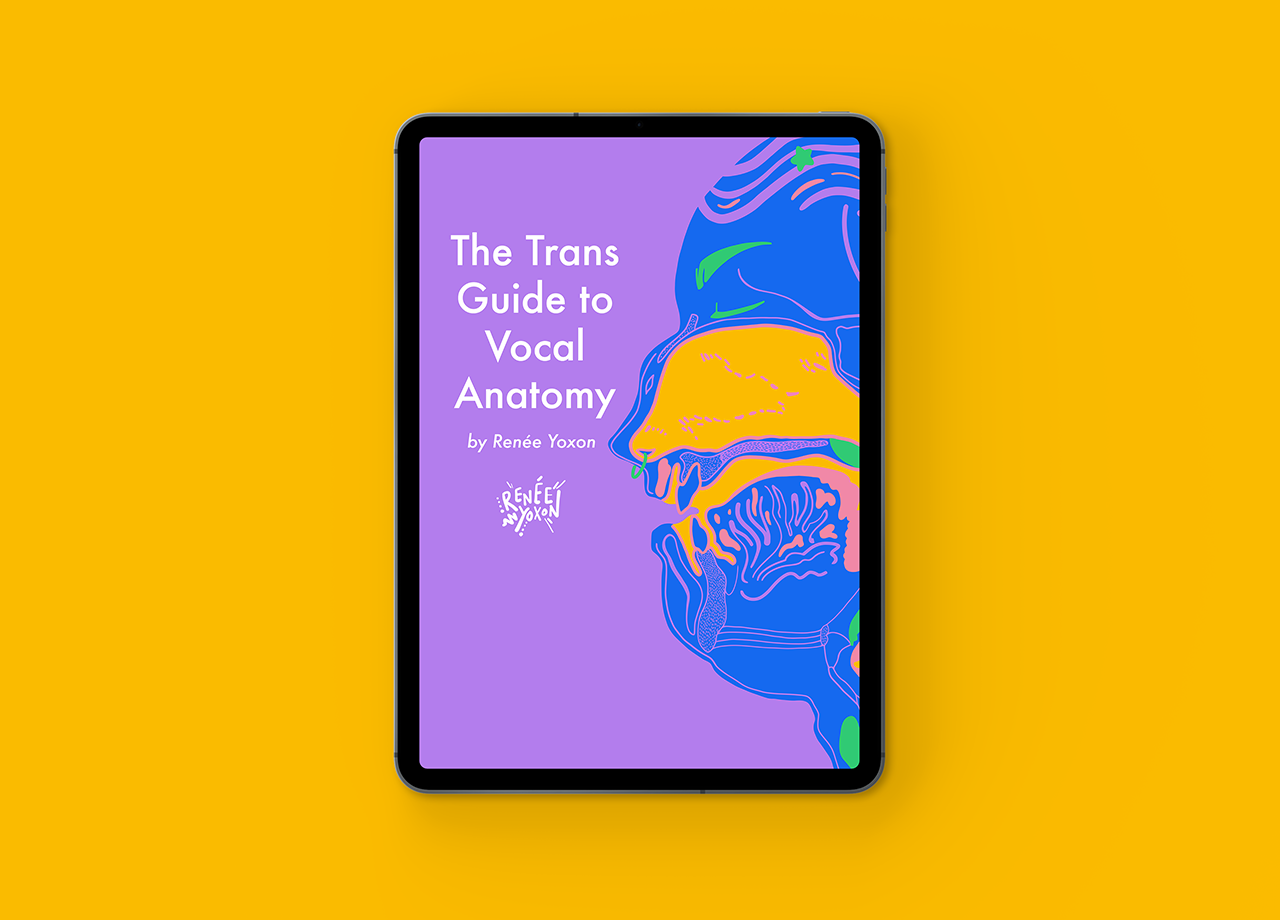 ipad with the cover of the Trans Guide to Vocal Anatomy ebook