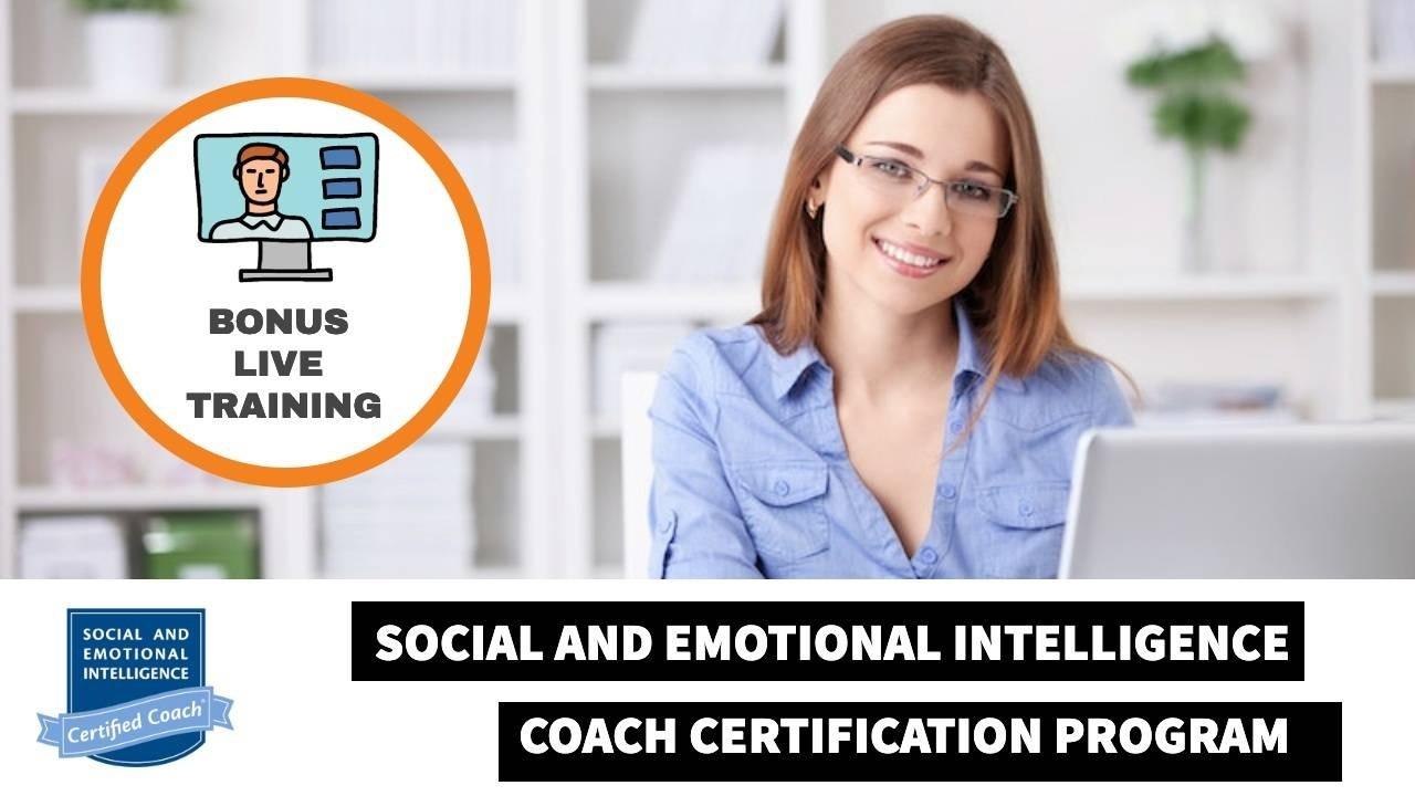 Social and Emotional Intelligence Coaching