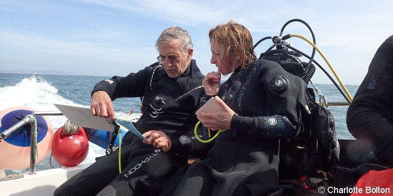 Divers on a boat checking survey details