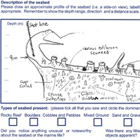 Details of completed Seasearch Observer form
