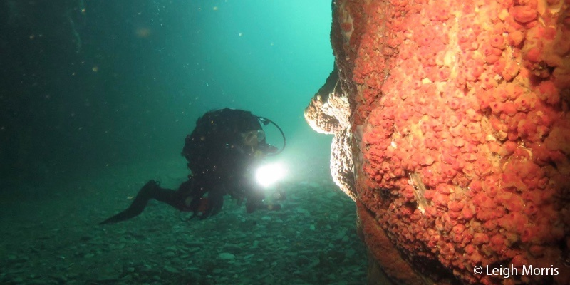 Diver is mouth of sea cave