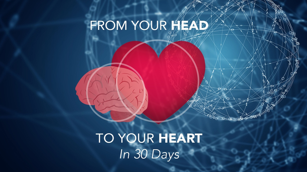Head To Your Heart - Mind Body Masters