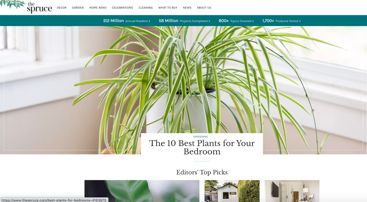 The Spruce homepage