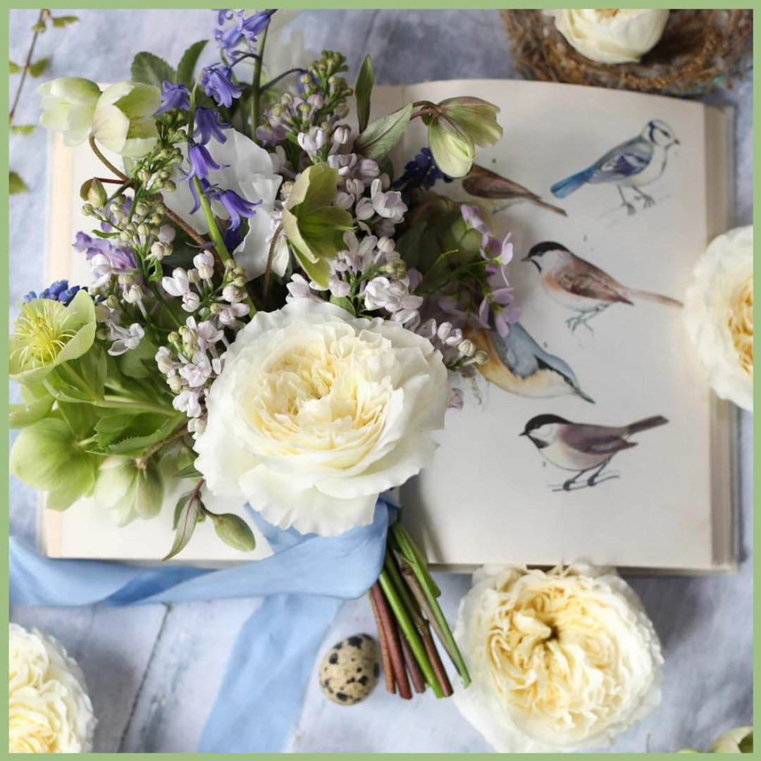 Alexandra farm garden white rose on a book with birds on the pageViva La Flora Live Podcast