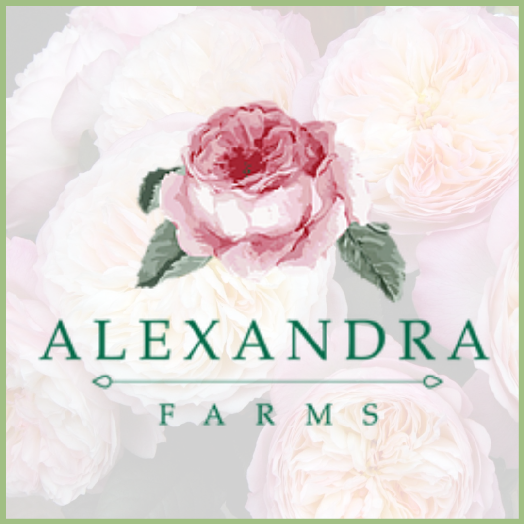 Alexandra garden rose farm Viva La Flora Live Podcast