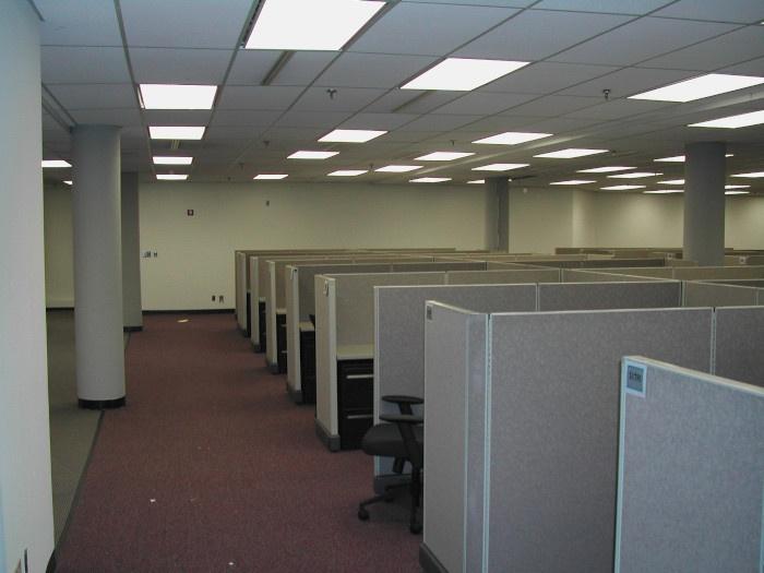 Corporate America cubicles