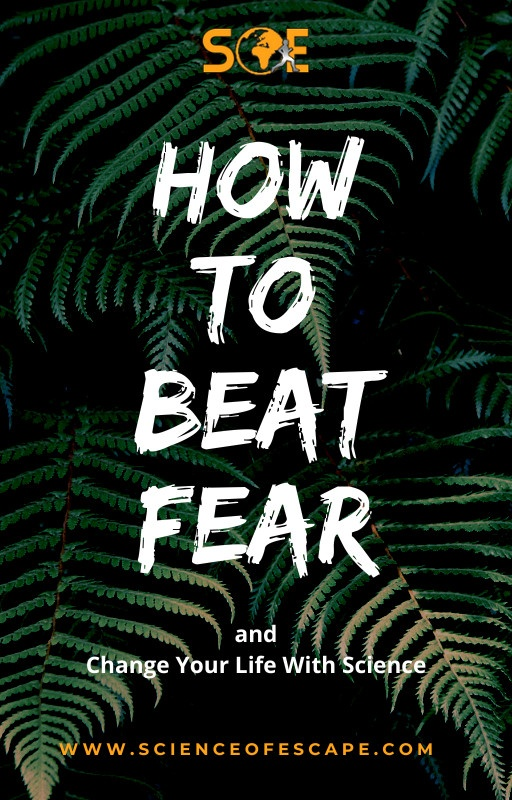 How to Beat Fear