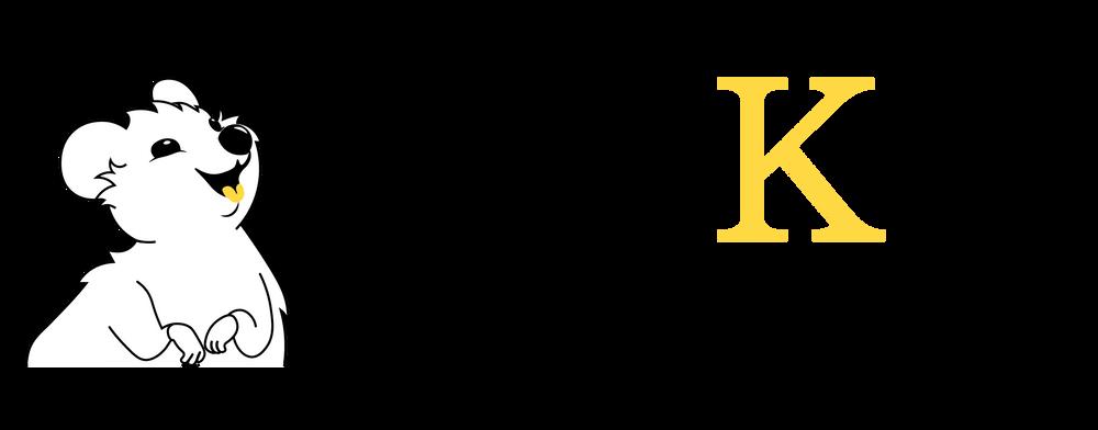 Sjekk Regnskapet logo