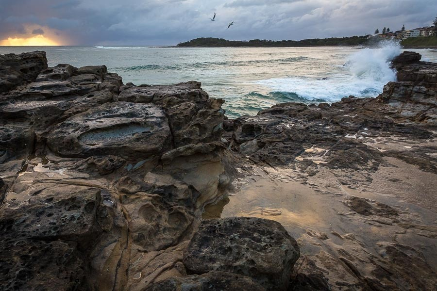 A landscape photo of rocks and a beach at sunrise as birds fly overhead