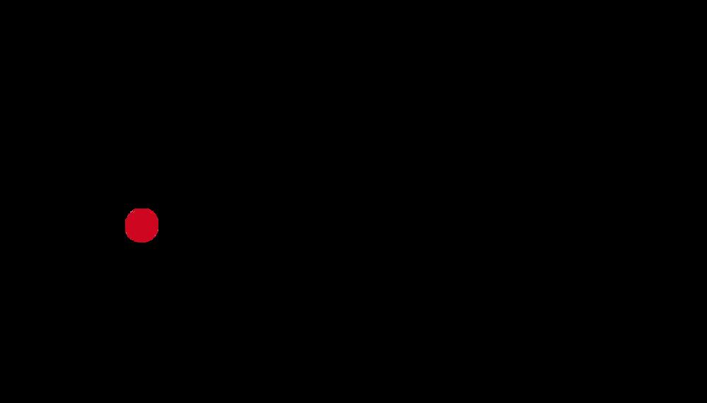 IAMSEO Logo