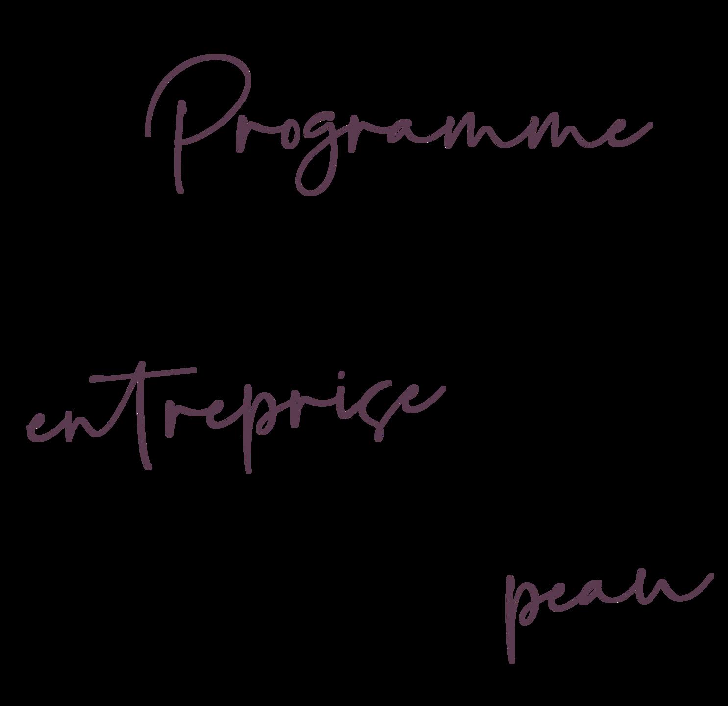 Un programme pour stimuler la croissance de ton entreprise… sans y laisser ta peau.