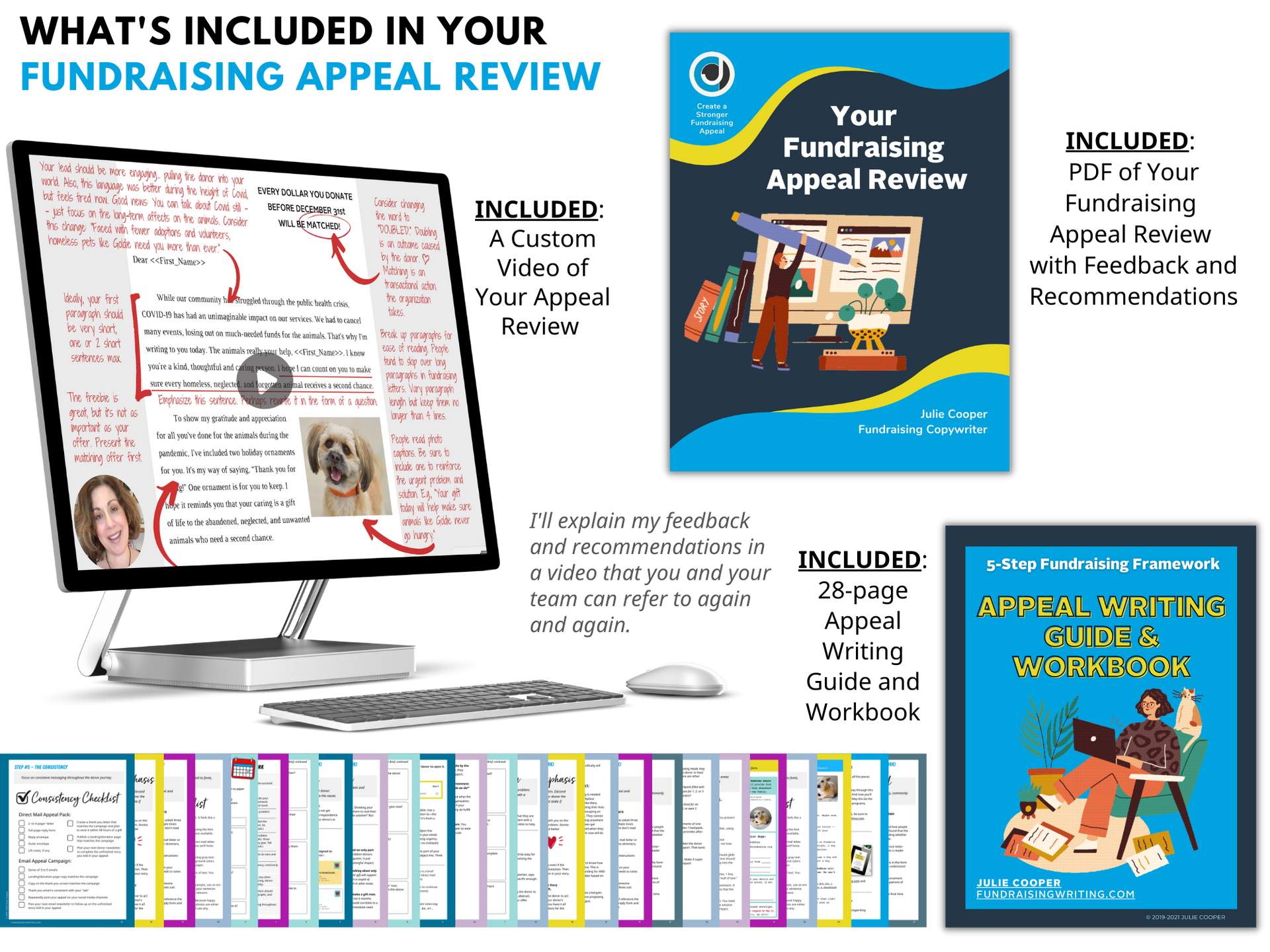 Appeal Review Bundle showing a computer with a view recording, the pages included in the workbook, and cover of the PDF showing the feedback and recommendations