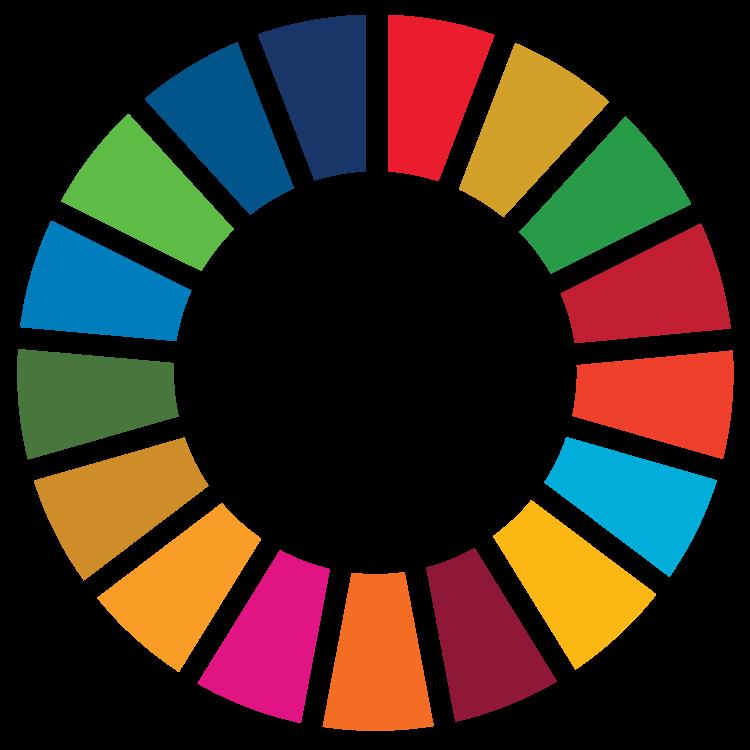 The UN's Sustainable Development Goals (SDGs) Official Logo