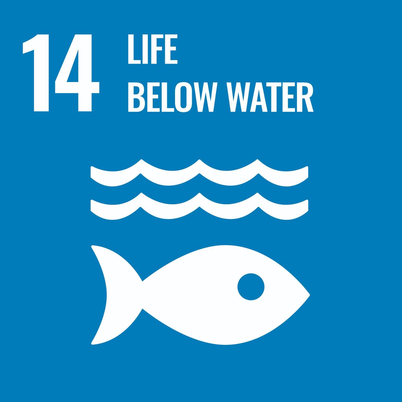 Goal 14, Life Below Water, of The UN's Sustainable Development Goals (SDGs)