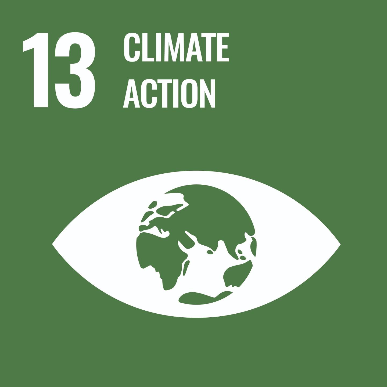 Goal 13, Climate Action, of the UN's Sustainable Development Goals (SDGs)