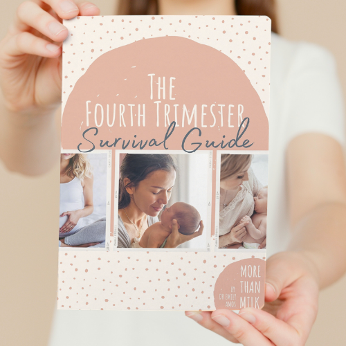 Surviving the Fourth Trimester eBook by Dr Emily Amos
