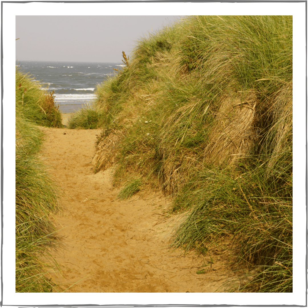 Path through a sand dune representing barriers for those of us with chronic pain.