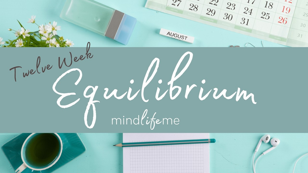 Equilibrium by Dr Emily Amos