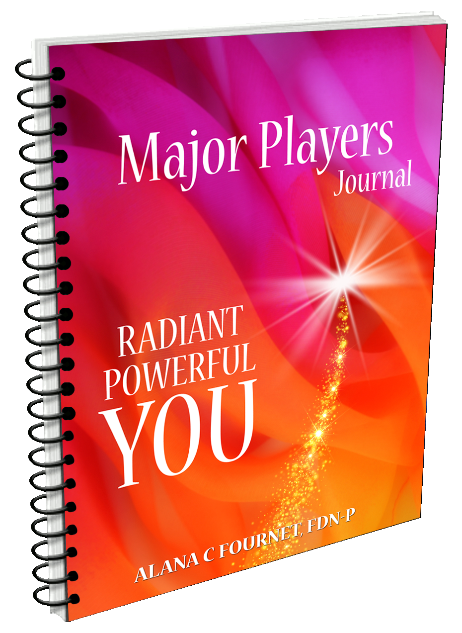 Major Player eBook